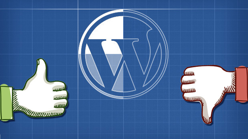 The Advantages and Disadvantages of WordPress Framework