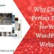 Why Choose Perfect Theme for Your WordPress Website