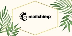 Social by Mail Chimp